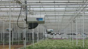Nagrzewnice gazowe Winterwarm DXC ECO Heaters na holenderskiej uprawie roślin pod osłoną.