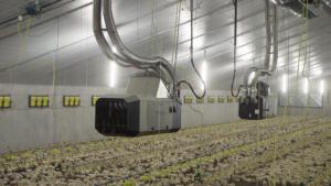 Ferma drobiu wyposażona w nagrzewnice gazowe DXC marki Winterwarm.